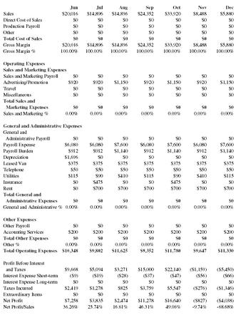 profit and loss statement for service business template