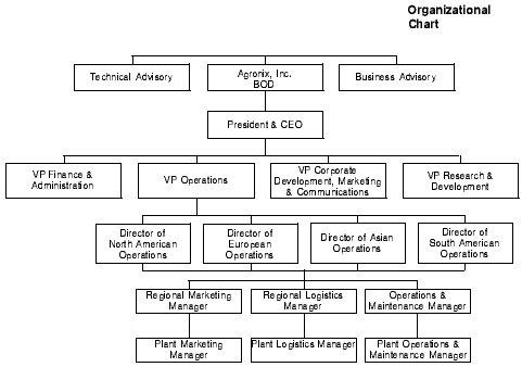 Whole Foods Corporate Structure