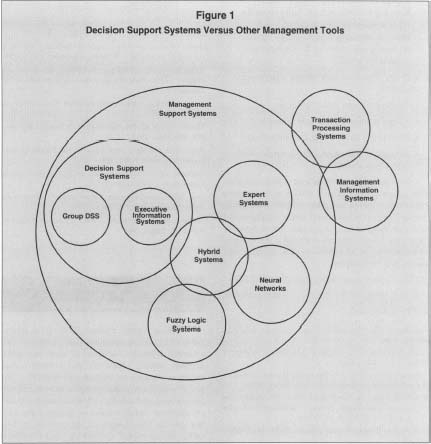 dss system essay Management information system implementation challenges, success key issues, effects and consequences: a case study of fenix system.