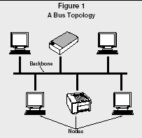 Computer Networks - organization, system, examples, type