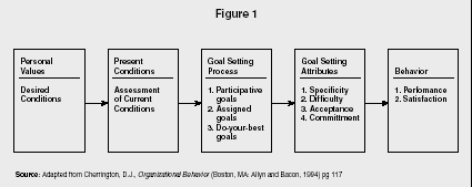 Goals and Goal Setting - strategy, organization, levels