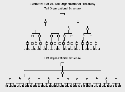Management Levels Strategy Organization Examples