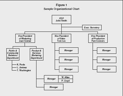 Organizational Chart strategy levels examples manager type – Business Organizational Chart