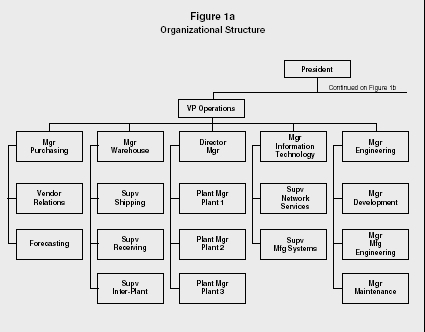 Organizational Structure Strategy Levels Examples