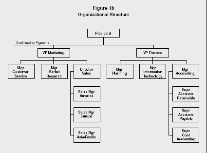 Organizational Structure Strategy Levels Examples Advantages Manager Model Type Company