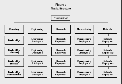 Ford Matrix Organizational Structure