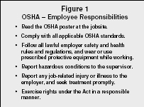 Safety In The Workplace Organization System Examples
