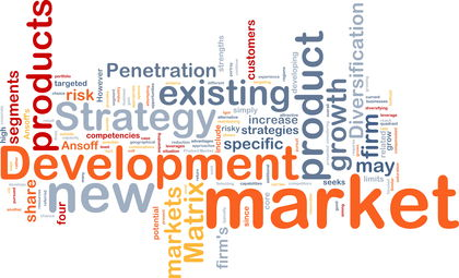 Diversification Strategy - organization, levels, advantages, manager