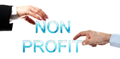 Nonprofit Organizations Levels System Examples